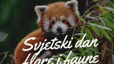 Photo of Danas je Svjetski dan flore i faune -dan za skretanje pažnje o divljim biljkama i životinjama